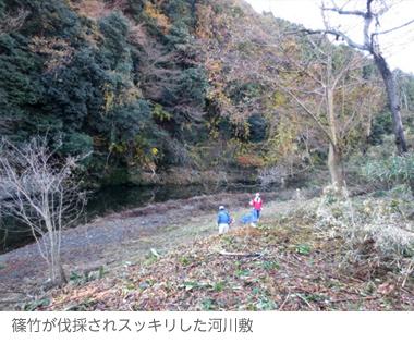 satoyama_p9