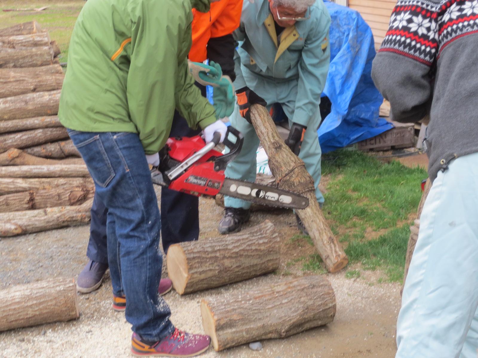 チェーンソーでの榾木の切断